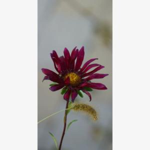 Blomster motiv stående